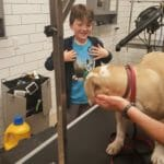 The importance of kids handling puppies Positively